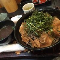 香味ねぎ肉南蛮そば(並盛)+100円倍盛